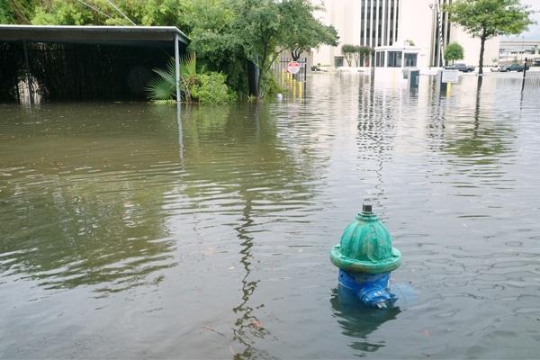 Hurricane Harvey Will Touch Everybody.