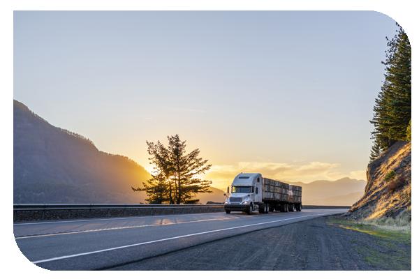 truck - LTL page